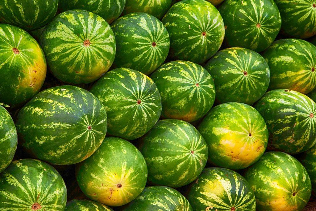 Frutas de verano melón